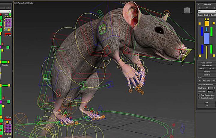 Tiger and Rat Animal Rigging Rat rig1 jpg