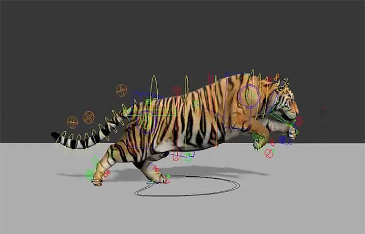 Tiger and Rat Animal Rigging Tiger rig1 jpg