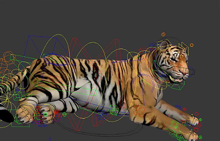 Tiger and Rat Animal Rigging Tiger rig2 jpg