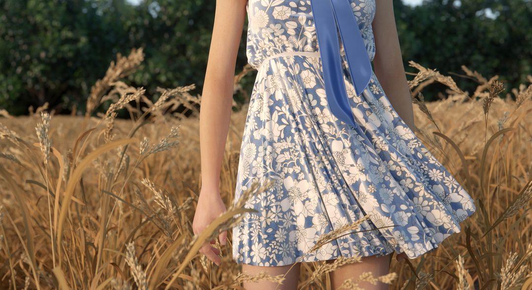 Fabric Modeling Spring jpg