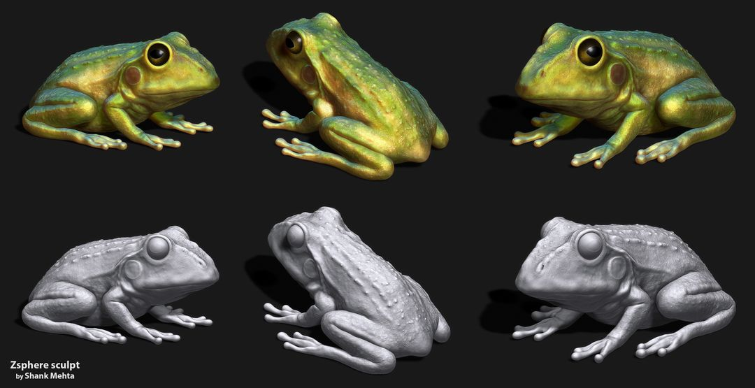 Organic Sculpting and Modeling Froggy 1 jpg