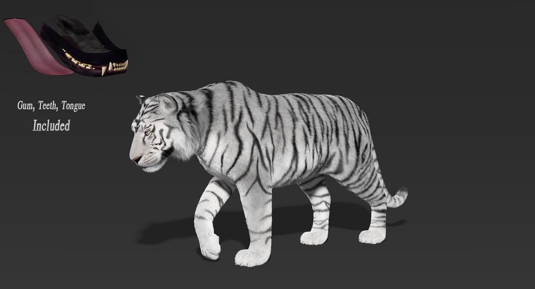 Tiger (Fur) Rigged Tiger Fur 15 png