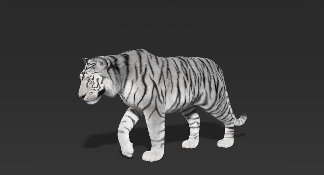 Tiger (Fur) Rigged Tiger Fur 2 png