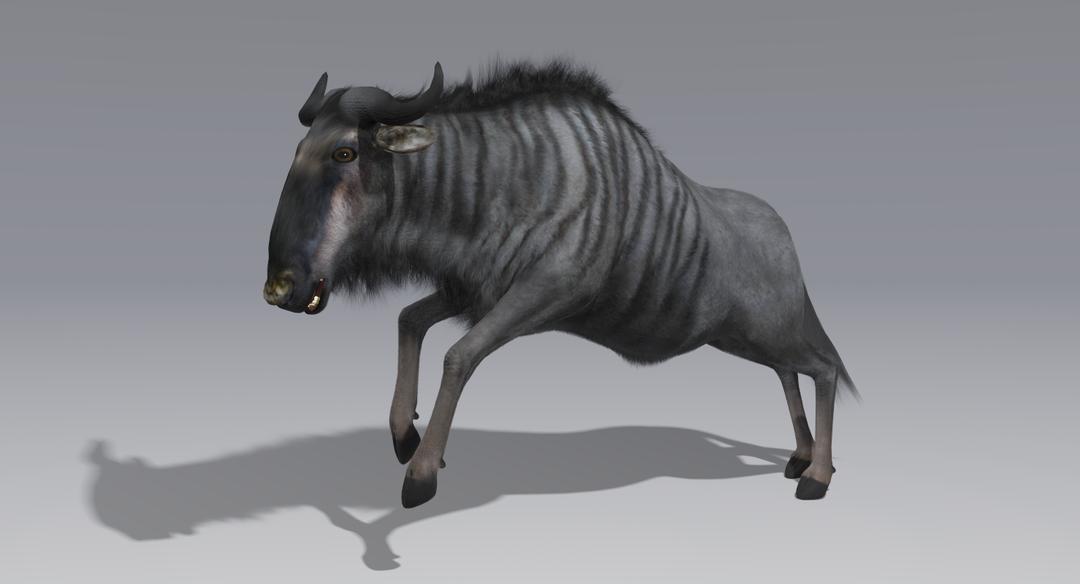 Wildebeest (Fur) Animated Wildebeest 8 png