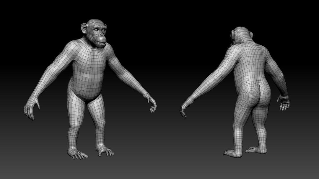 3D art works Chimp 2 jpg
