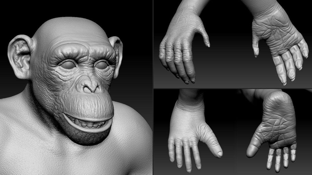 3D art works Chimp 3 jpg