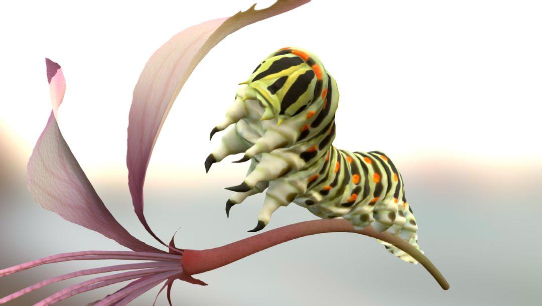 3d modelling Caterpillar jpg