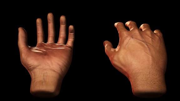 Hands - Unity and Unreal