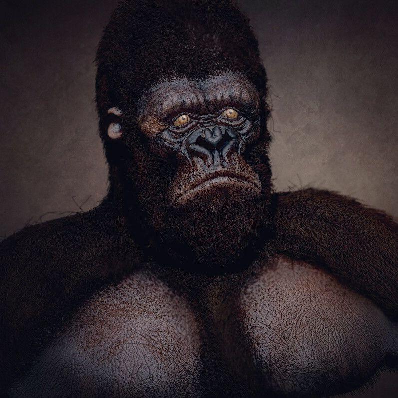 Gorilla narendra keshkar king kong ji jpg