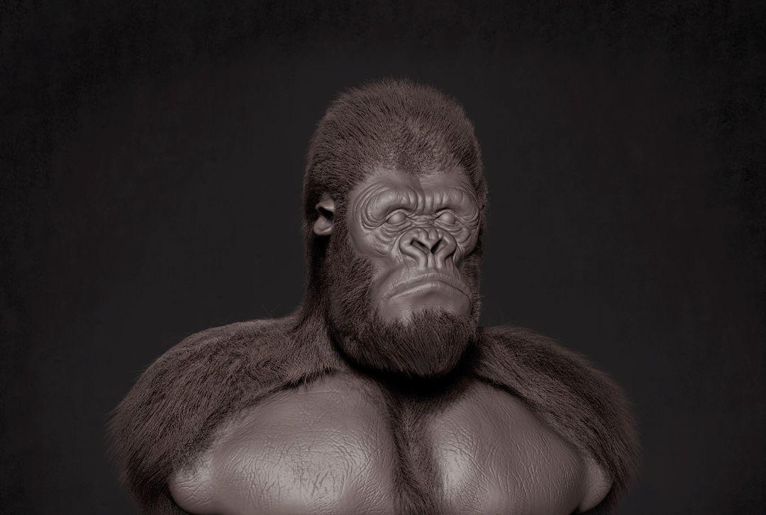 Gorilla narendra keshkar kingkong wip 2 jpg
