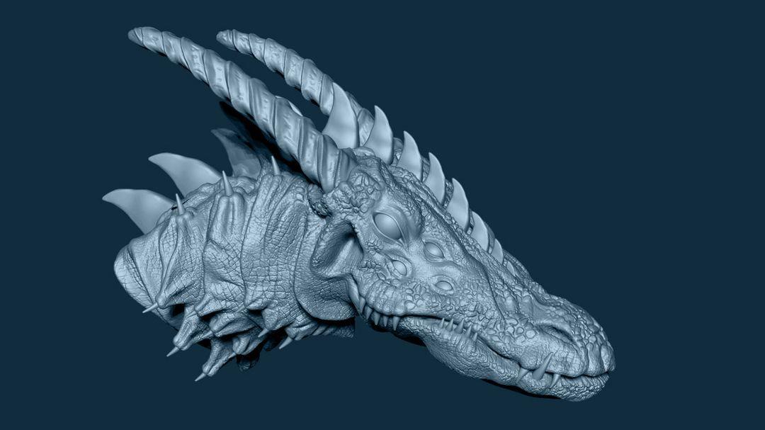 Dragon narendra keshkar 2 jpg
