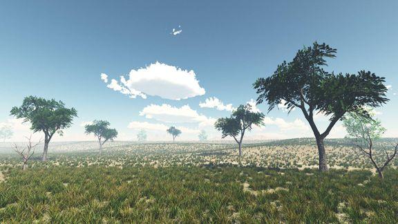 Environment  Design 3D