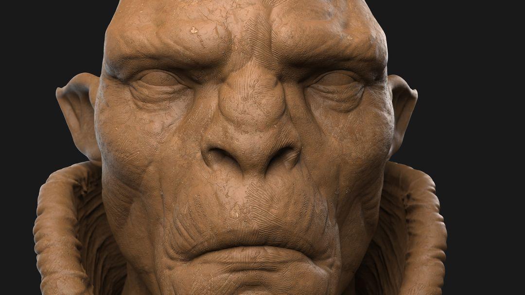 Orc Commander Character Sculpt Orc 03 jpg