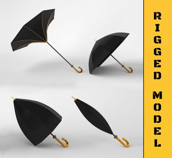 Umbrella [Rigged 3D Model]