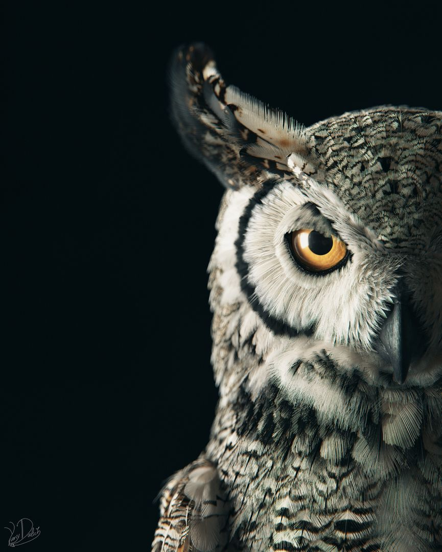 Subarctic Great Horned Owl Owl 01 jpg