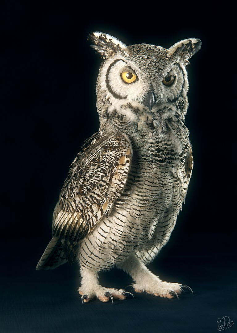Subarctic Great Horned Owl Owl 03 jpg