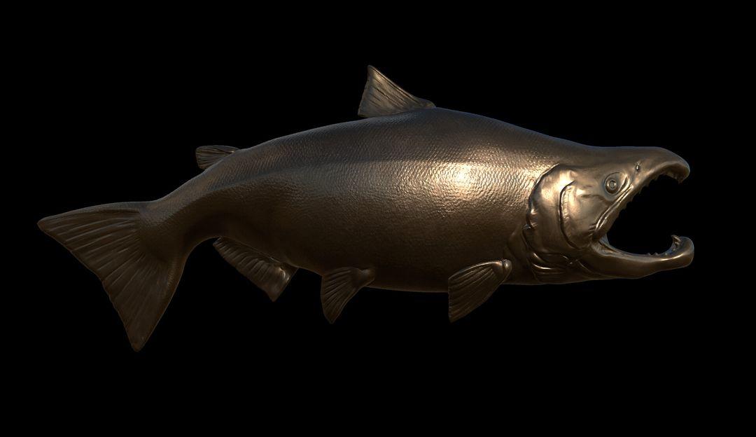 National Park Service Commission - Salmon & Pike Pike 01 jpg