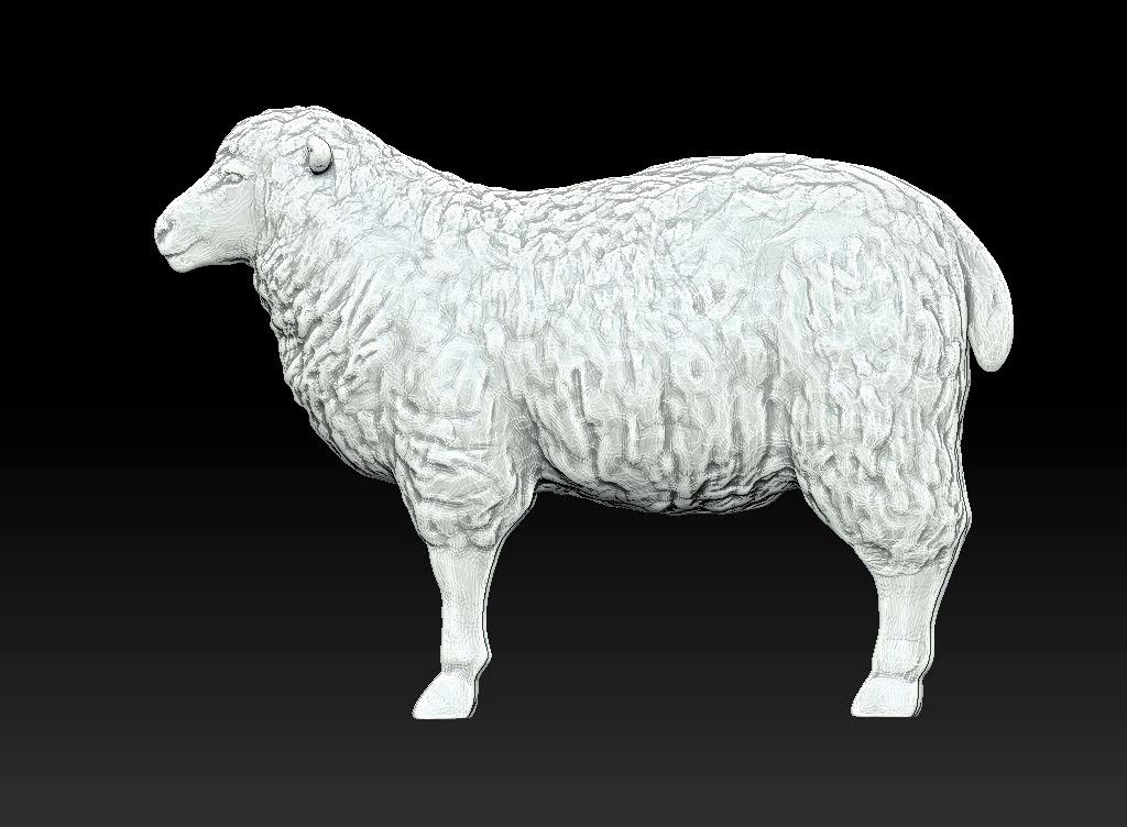 sheep 3D print model Untitled Project00 jpg