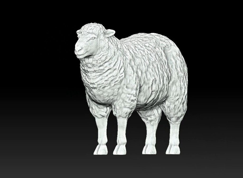sheep 3D print model Untitled Project05 jpg