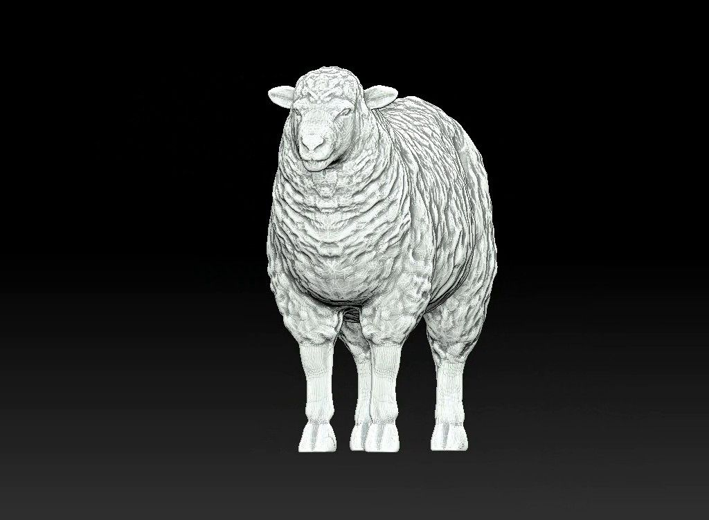 sheep 3D print model Untitled Project06 jpg