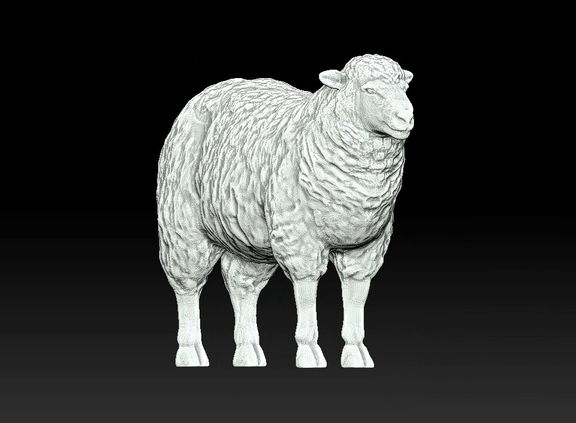 sheep 3D print model