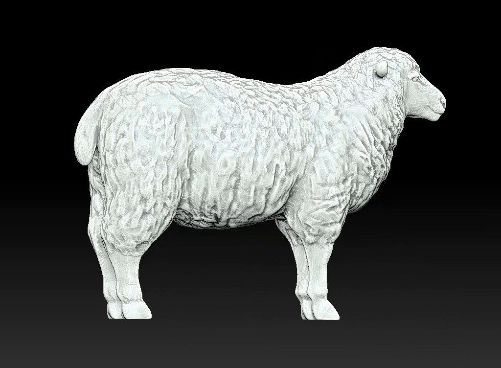 sheep 3D print model Untitled Project13 jpg