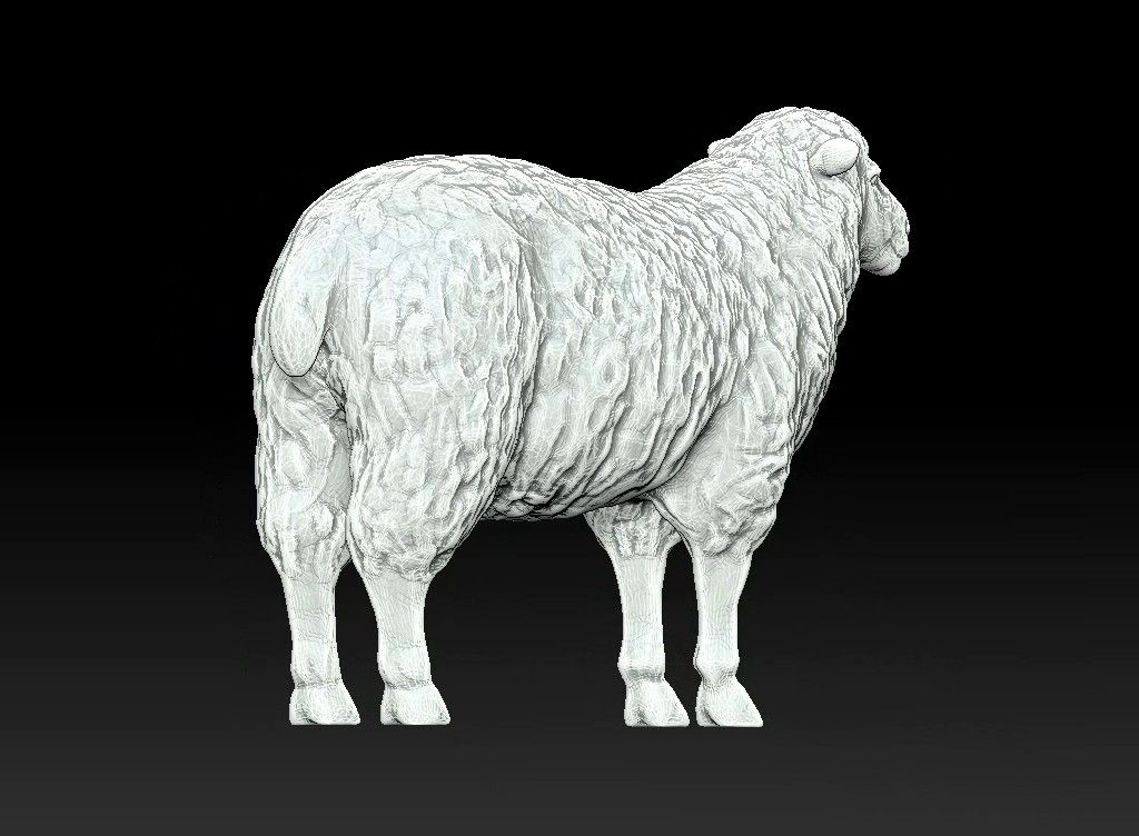 sheep 3D print model Untitled Project15 jpg