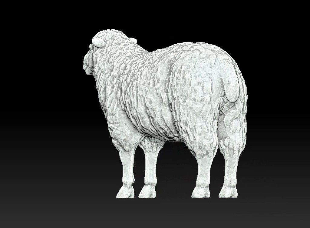 sheep 3D print model Untitled Project20 jpg