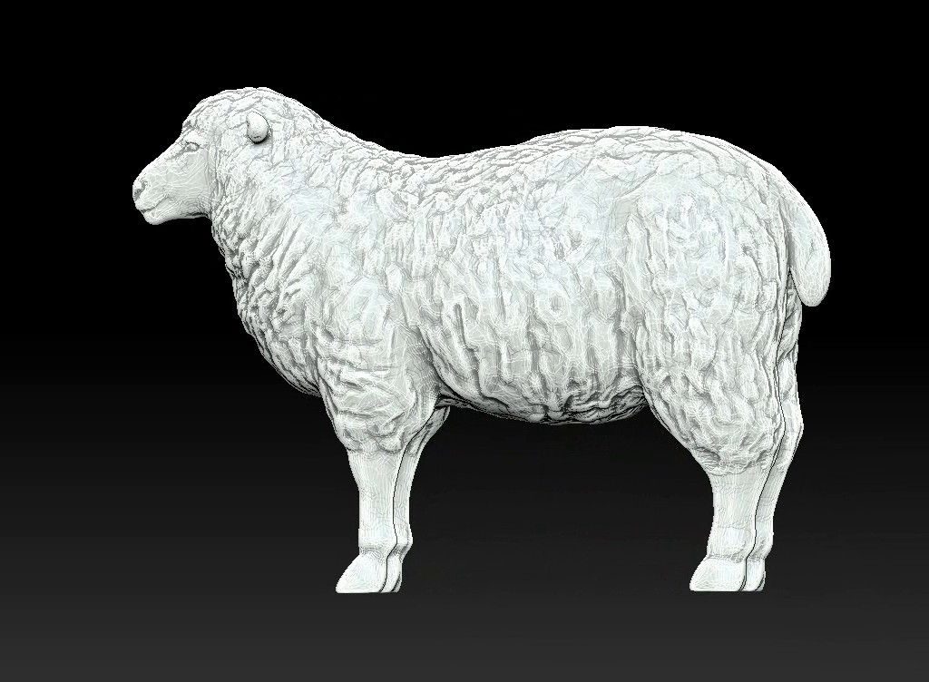 sheep 3D print model Untitled Project23 jpg