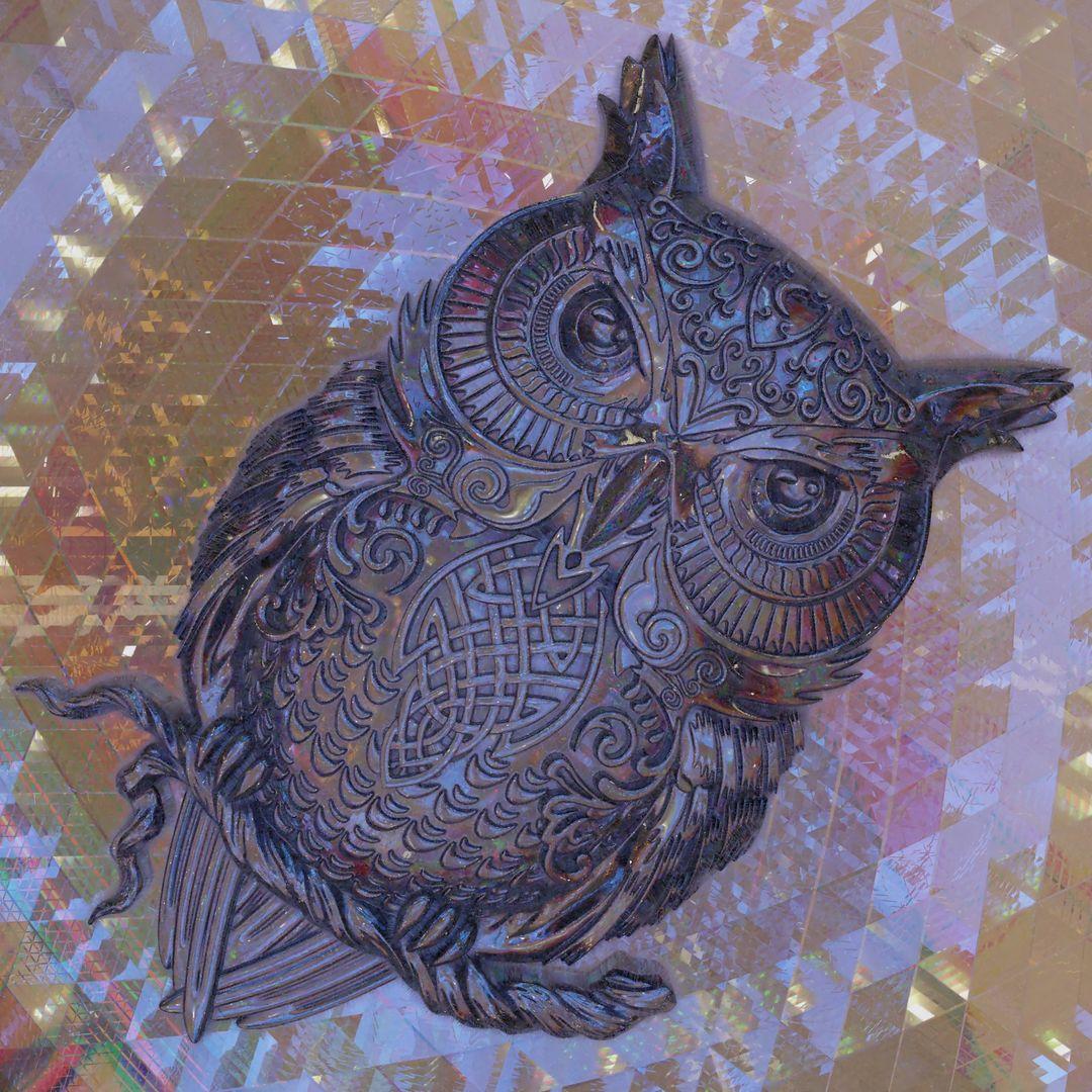 Owlet owl jpg