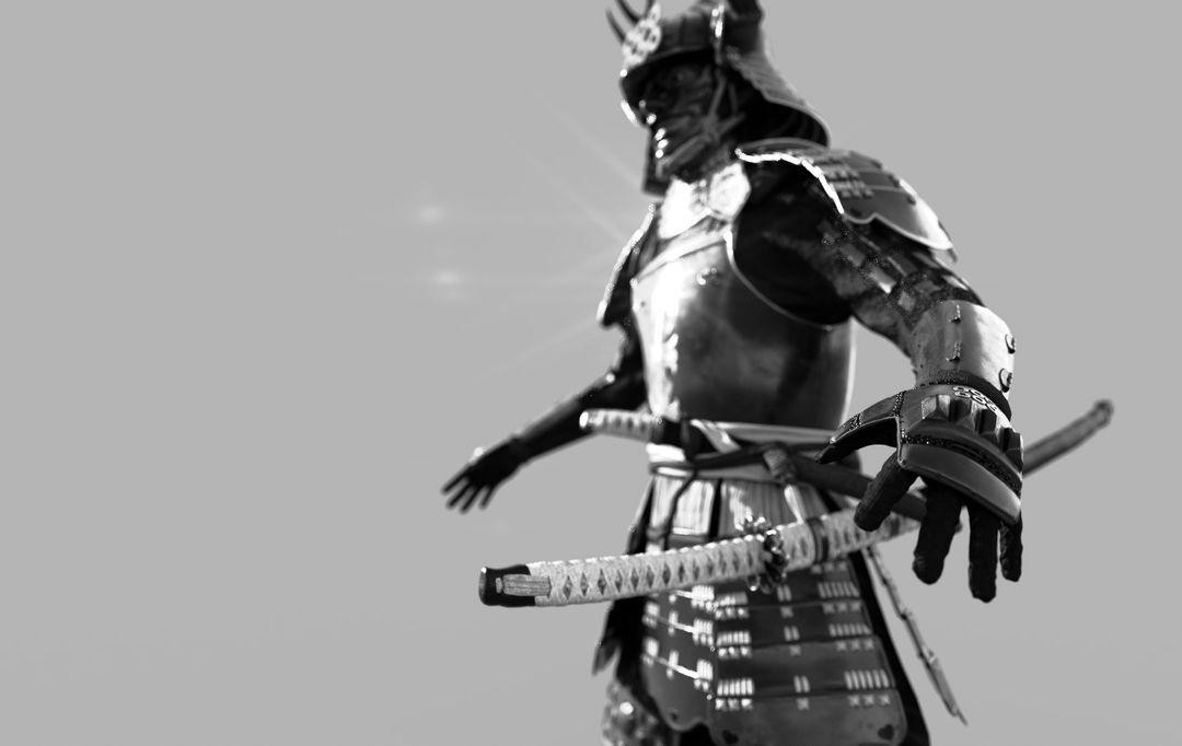 Samurai SamuraiRender 4BW jpg