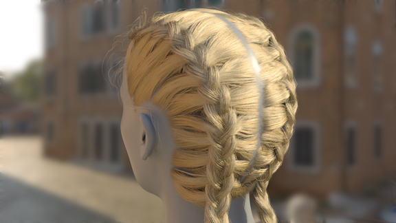 Doubble Braid groom