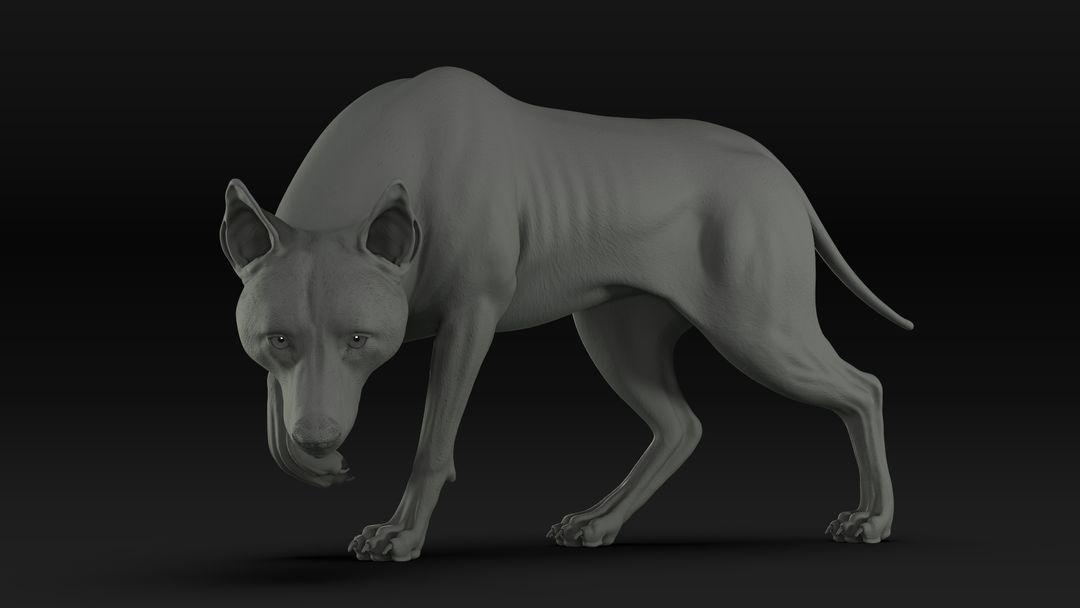 Black Timber Wolf (Fur) Rigged Displacement01 jpg