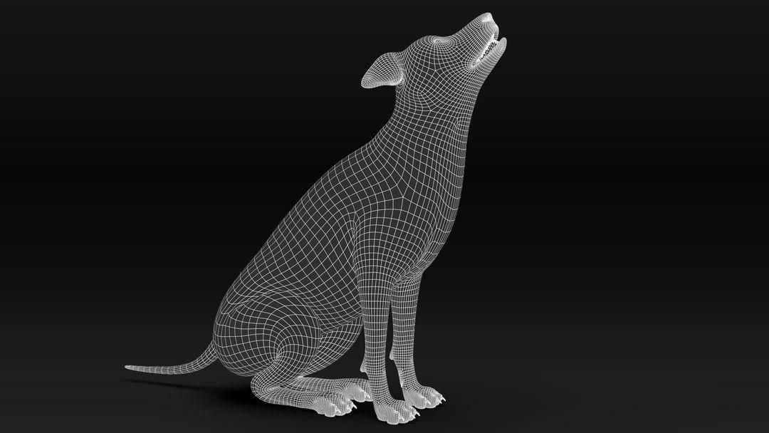Black Timber Wolf (Fur) Rigged Wolf Wire07 jpg