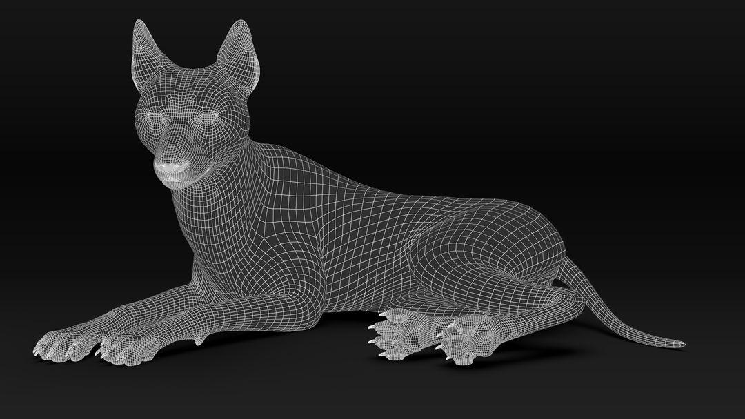 Black Timber Wolf (Fur) Rigged Wolf Wire08 jpg