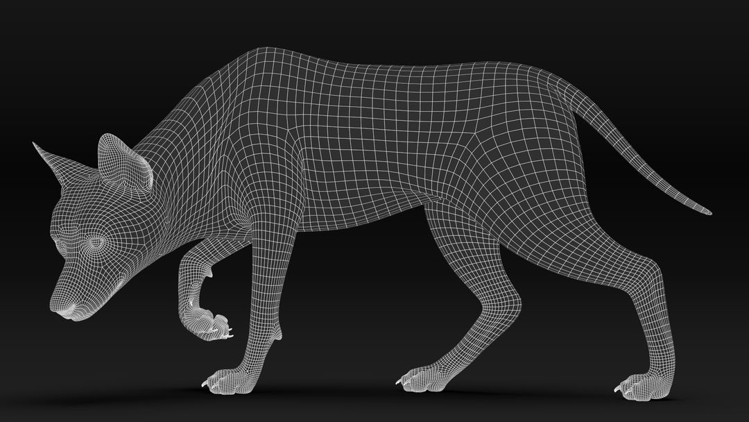 Black Timber Wolf (Fur) Rigged Wolf Wire10 jpg