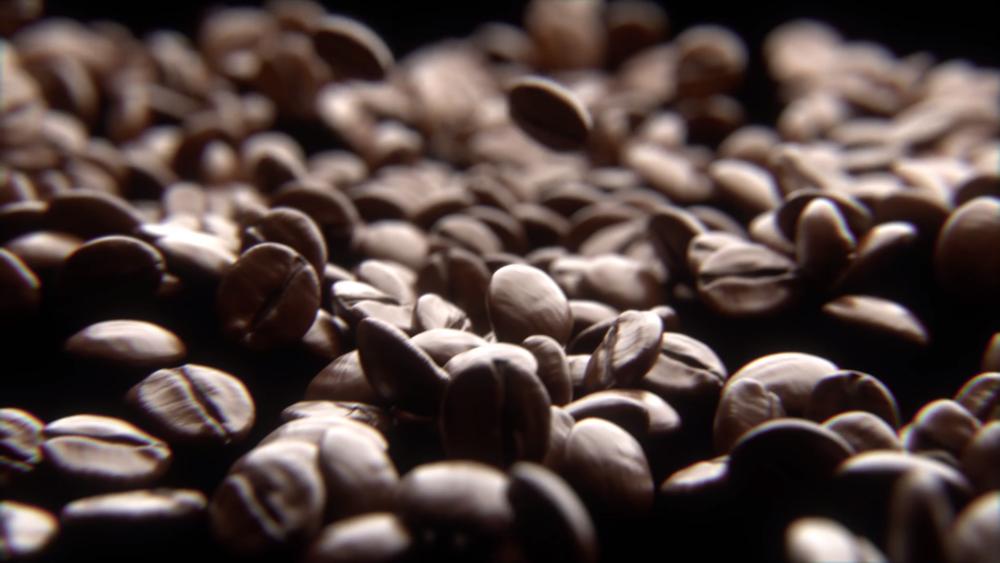 Coffee Beans coffee matteo musci png