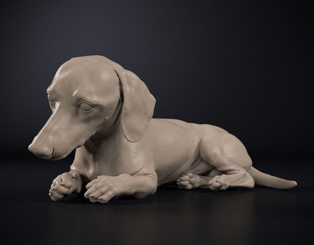 Dog Sculpt Dog Sculpt 01 jpg