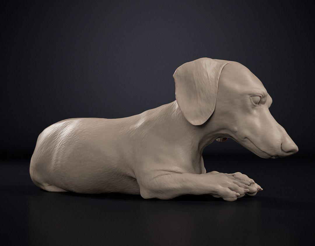 Dog Sculpt Dog Sculpt 02 jpg
