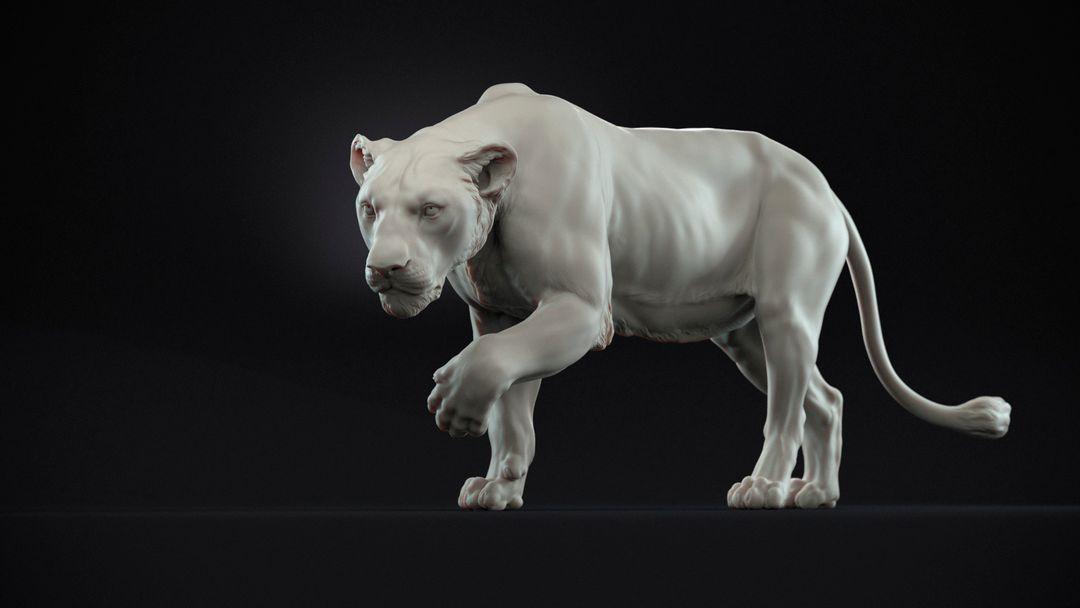 Lioness Sculpt Lioness 01 jpg