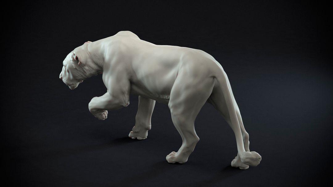 Lioness Sculpt Lioness 03 jpg