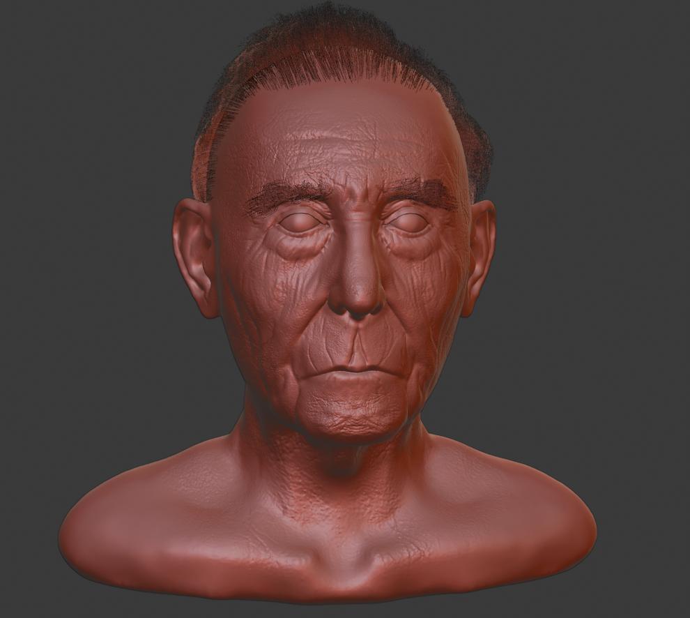 OId Man Bust Sculpt Screenshot 4 png