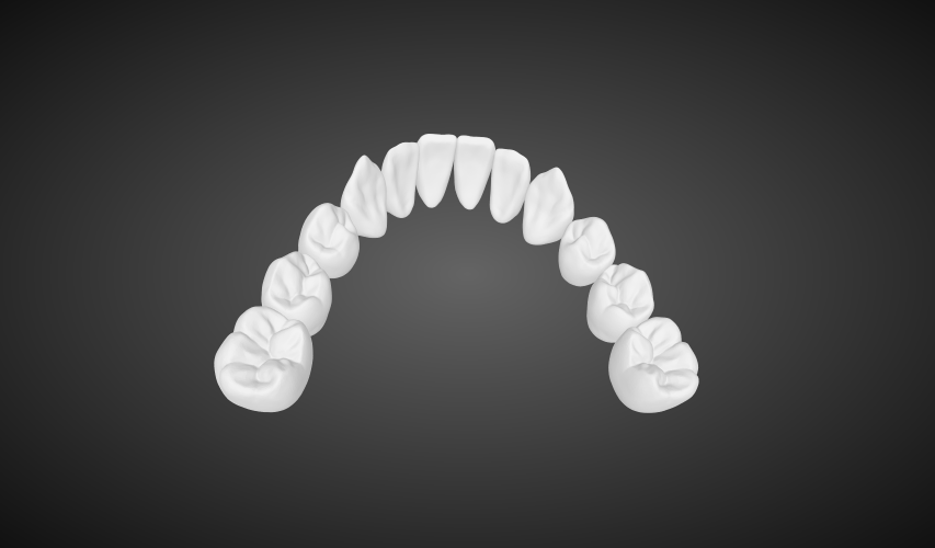 Digital Dentures digital full dentures labmagic 3d cad 20160420 1542 labmagic 3d me90774e1087c14cf3b2514493606742c3 1 stl png