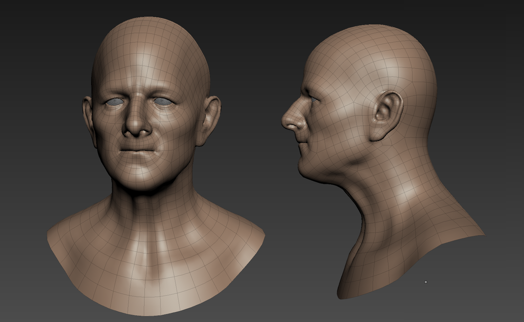 3D Characters head study wireframe png