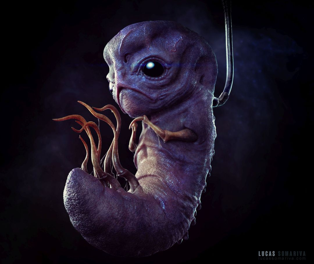 Embryo Embryo 05b jpg