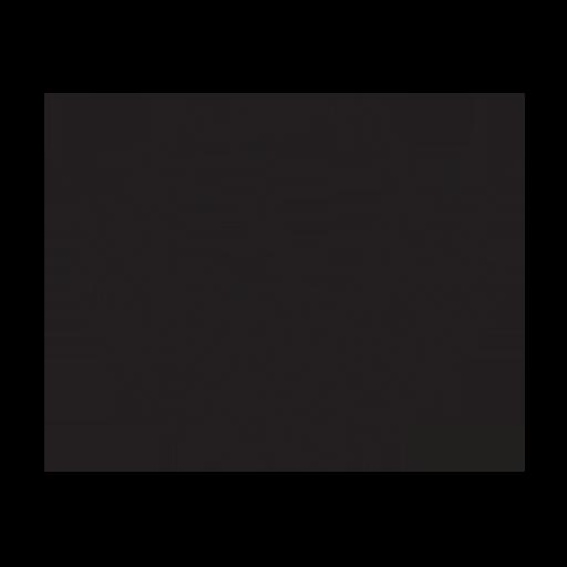 Phoenix FD Icon